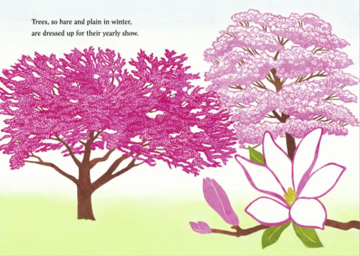 Spring Blossoms (3)